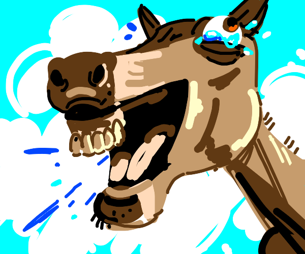 Horse crying with laughter