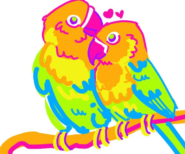 Featherly love.