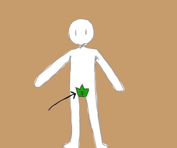 A groin leaf