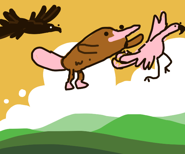 Flying platypus, flamingo and crow