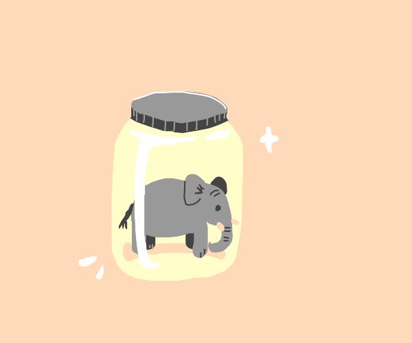 Tiny elephant in a glass jar