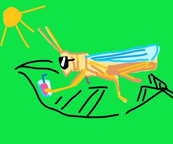 cricket chillin