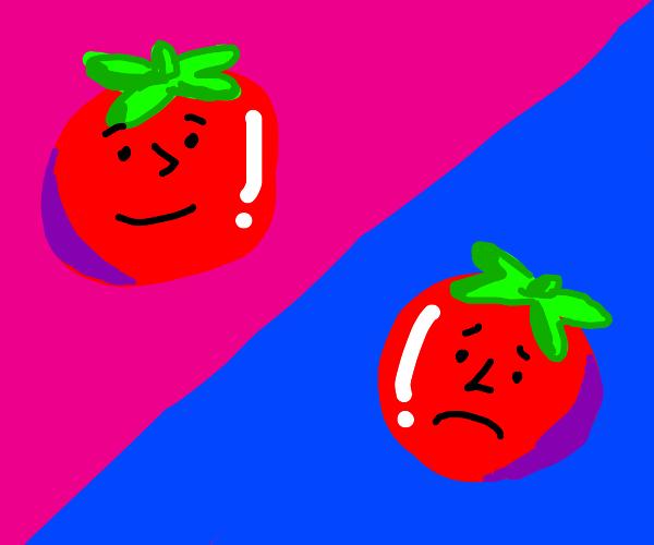 Happy Tomato / Sad Tomato
