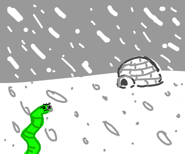 Green worm looking for igloo in a snowstorm
