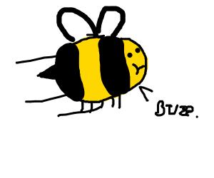 Bee/Wasp