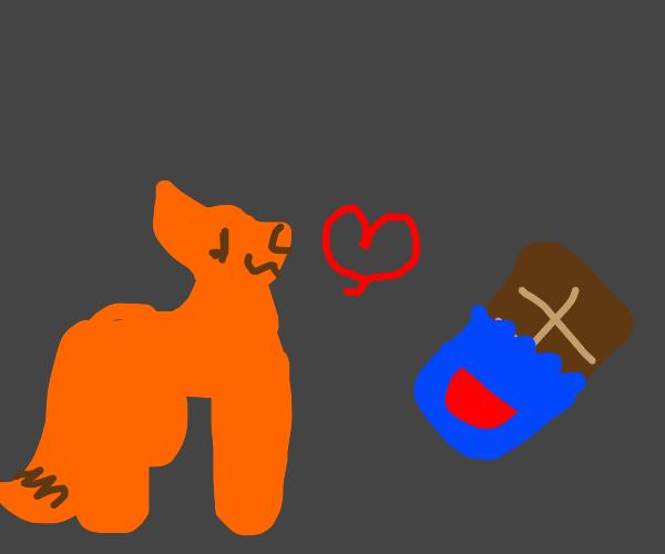 Fox loves his chocolate bar