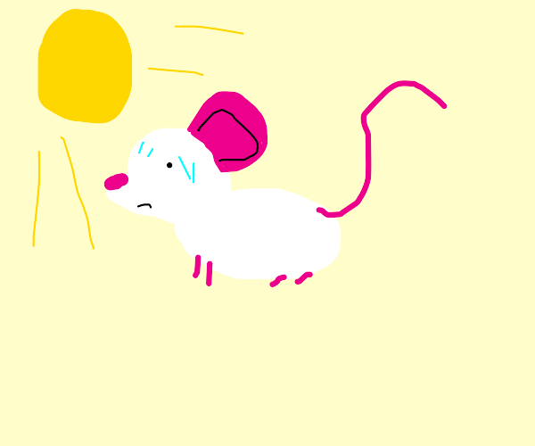 Hot mouse