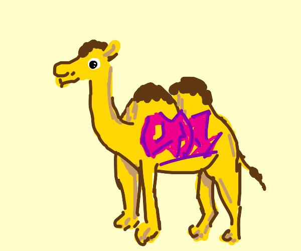 Camel graffiti
