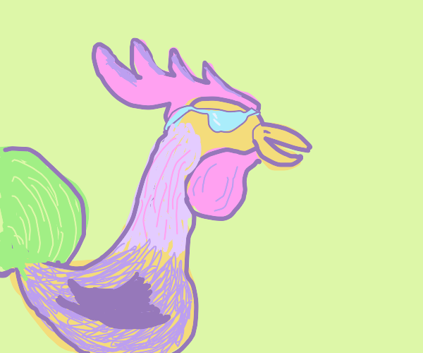 Cool Rooster
