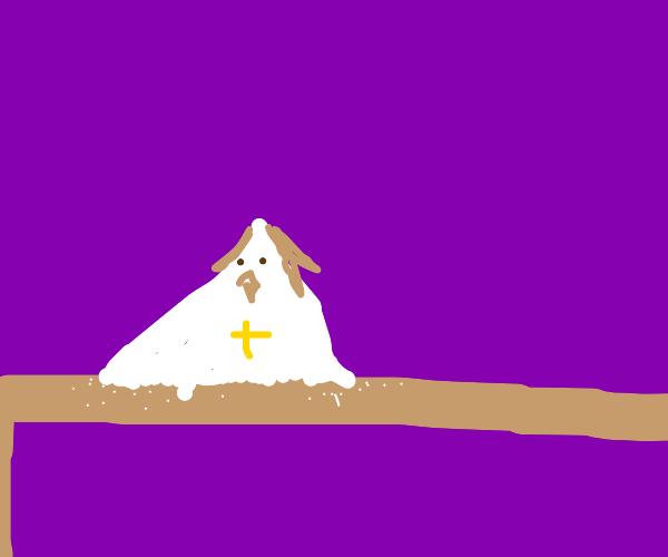 jesus salt