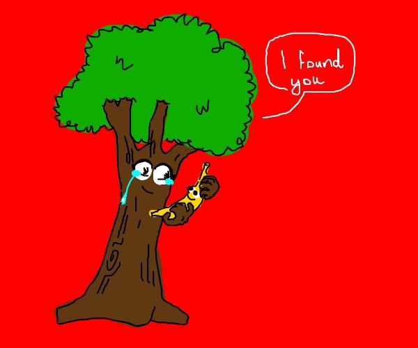 tree found his banana
