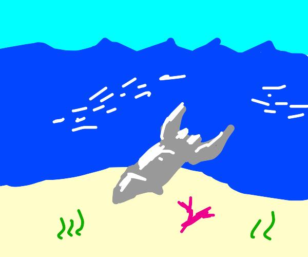 underwater rocket ship