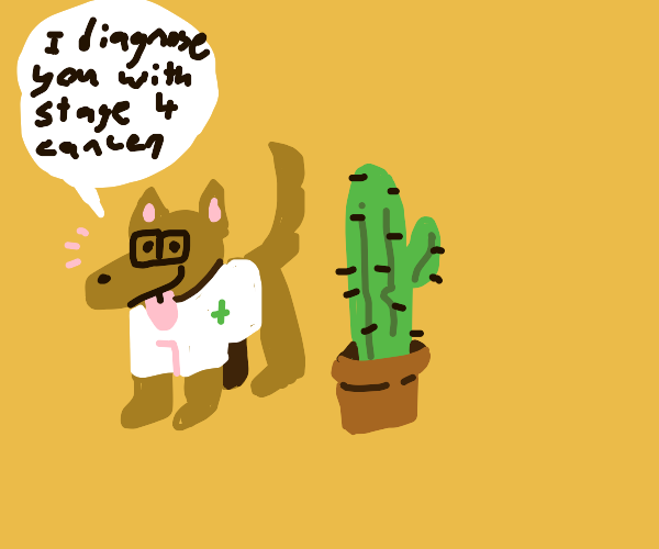 Dog doctor with cactus