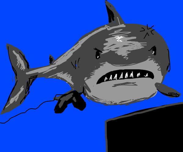 Shark rage quitting