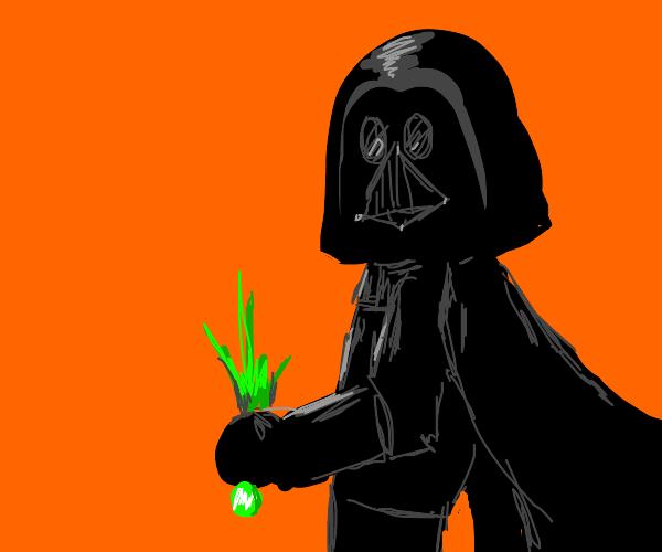 Darth Vader steals onion leek