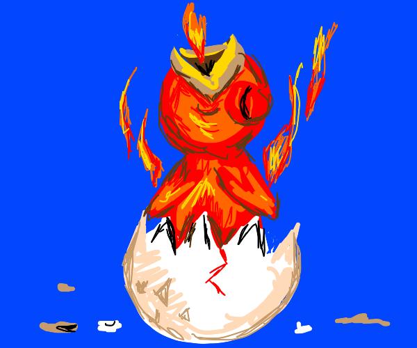 a reborn pheonix
