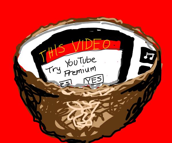Youtube in a nutshell