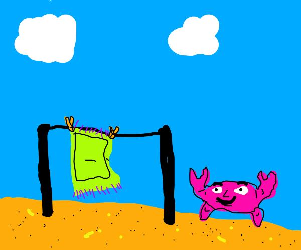Blue crab air drying a green rug