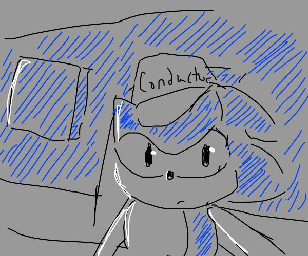 sonic driving a train