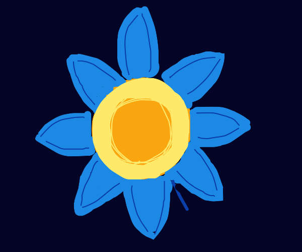 a daisy but the petals are blue