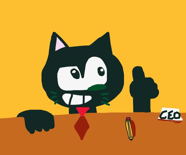 Ceo Cat