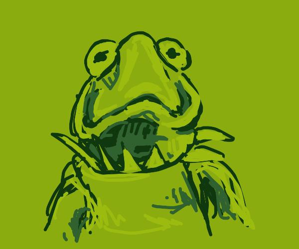 Kermit is horrified