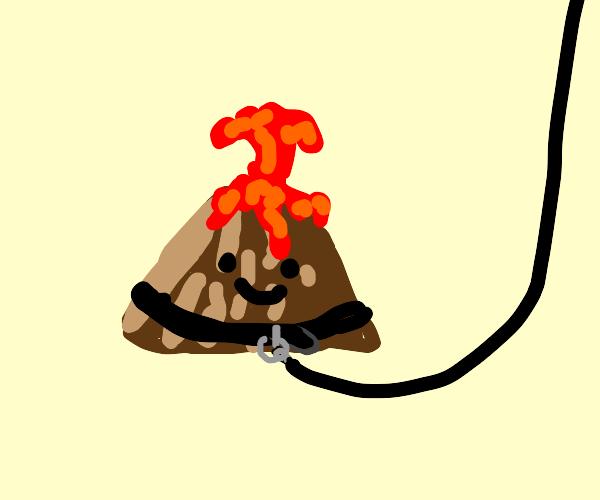 Pet Volcano