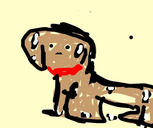 Oily Doggy