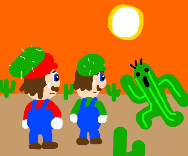 the catcus plumber bros. facing the desert