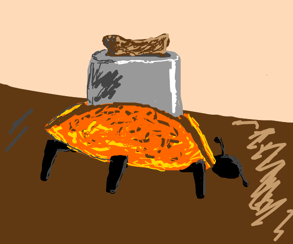 Orange toaster bug