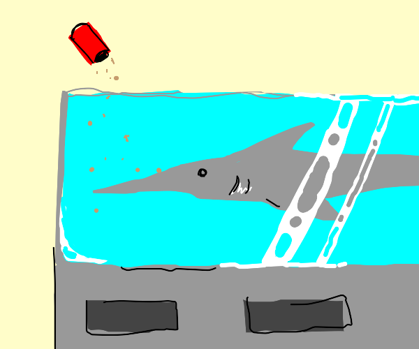 Swordfish in a fish tank being fed fish food