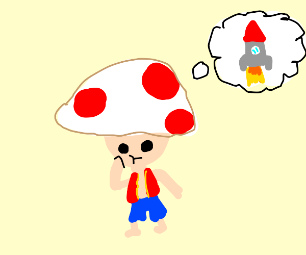 Toad (Mario) thinking about Rockets