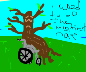 (Oak) Tree in a wheelchair
