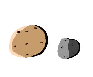 Cookie and a rock