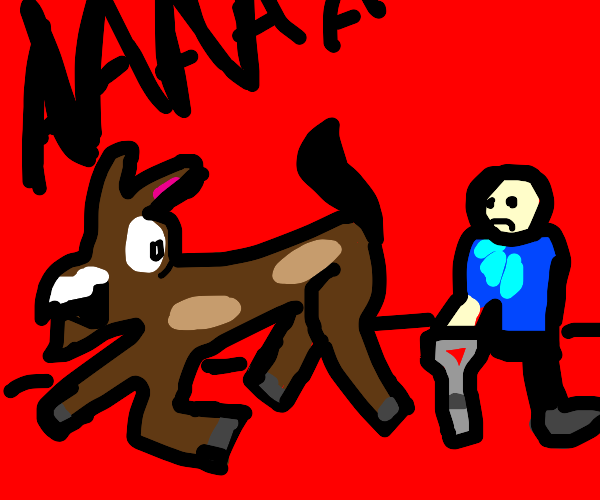 horse is afraid of a double amputie