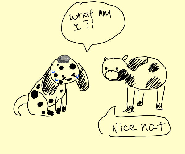 Stoned dalmatian thinks it's a cow