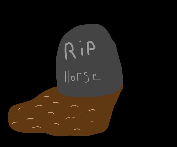 late horse