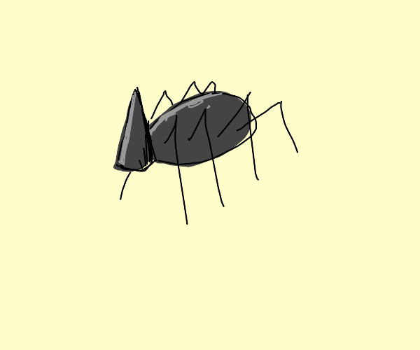 Spider conehead