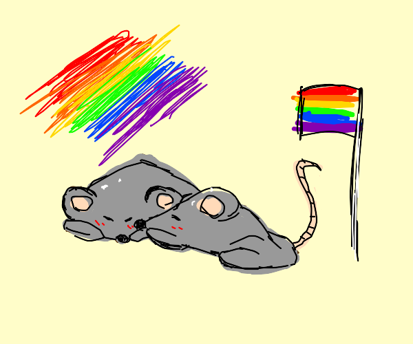 Gay Pride Rat Couple!