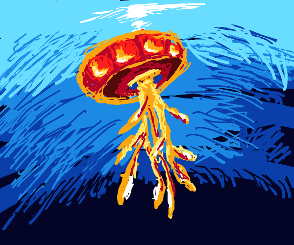 Beautiful jellyfish :)