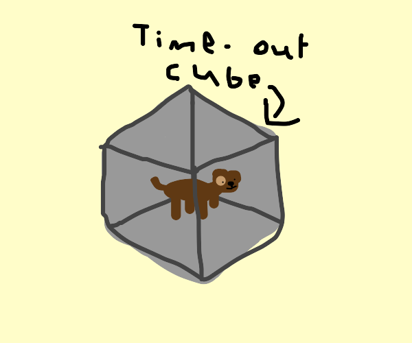 dog put in time-out cube