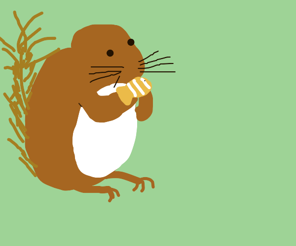 squirrel eats finding nemo characters