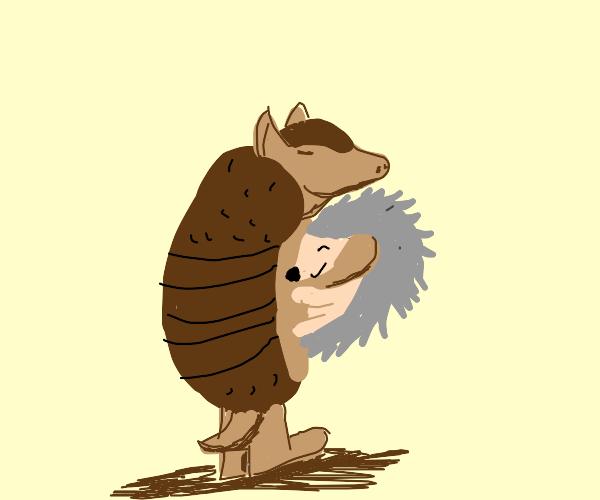 Armadillo adorably hugs hedgehog