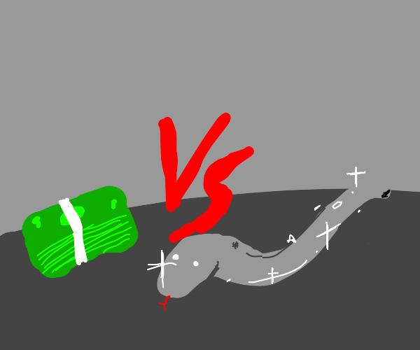 money versus metal snake