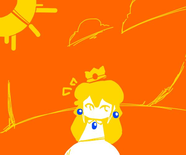 princess peach in orange world