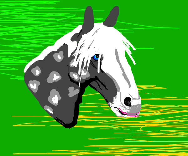 gray horse with lipstick