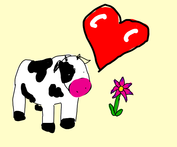 a cow loves a flower