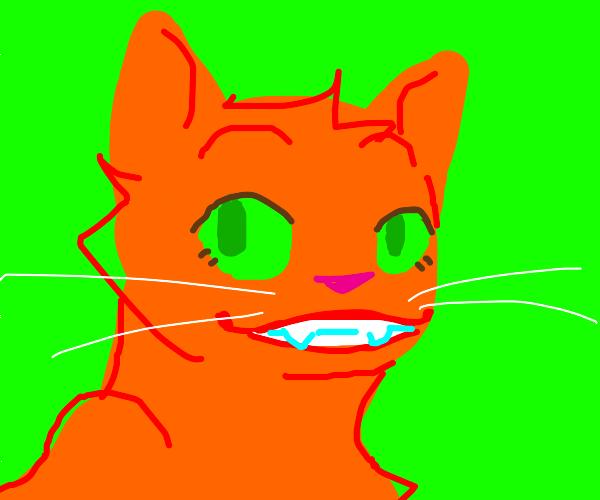 Very happy cat