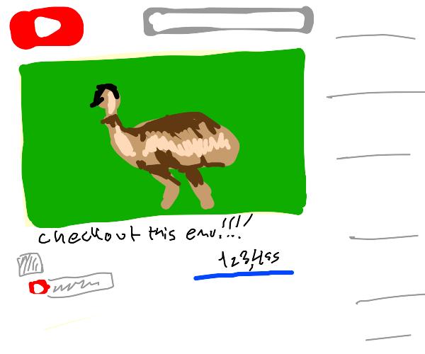Emu on the internet