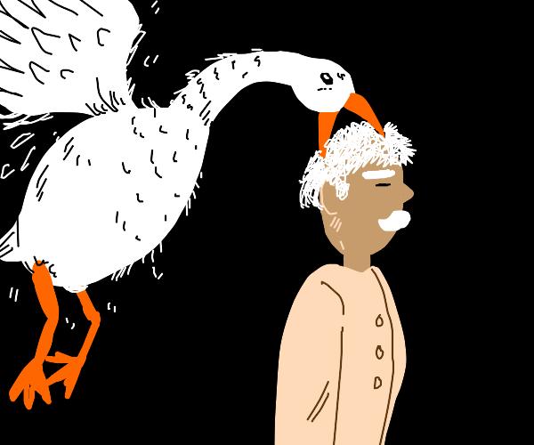 Goose eating man's head